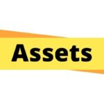 Types of Assets in Tally Accounting
